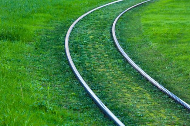 Trilhos de bonde cobertos com grama verde