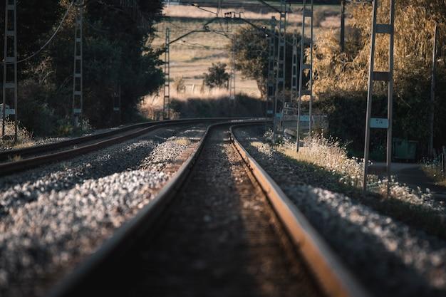 Trilhos de trem indo para o horizonte ao pôr do sol