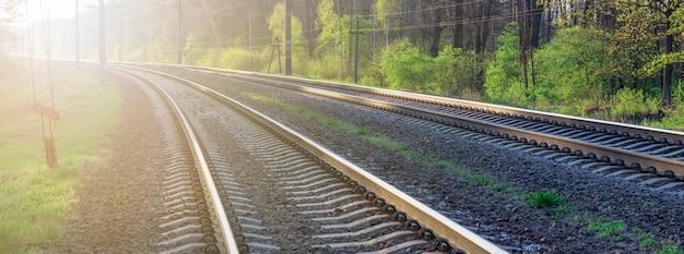 Trilhos de trem pela floresta na direção do nascer do sol