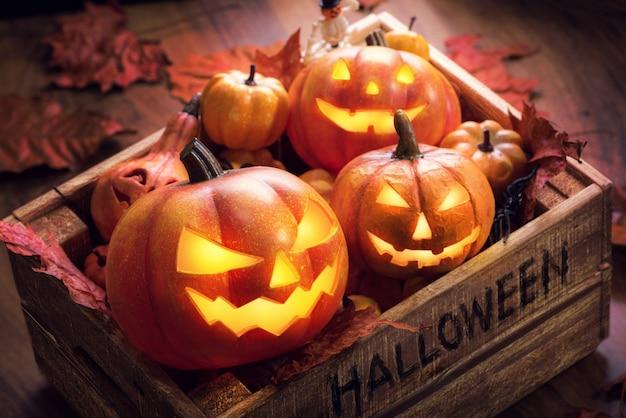 Tripulação abóboras de halloween feliz em caixa de madeira envelhecida vintage velho