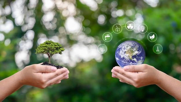 Troca de planeta com ícone de energia limpa em mão humana com pequena árvore em mão humana
