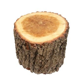 Tronco de toco de árvore de madeira isolado no branco
