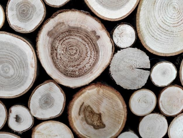 Troncos de árvores, decoração de corte de árvore.
