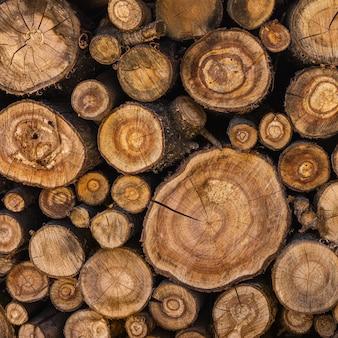 Troncos de árvores serrados empilhados em uma pilha de lenha