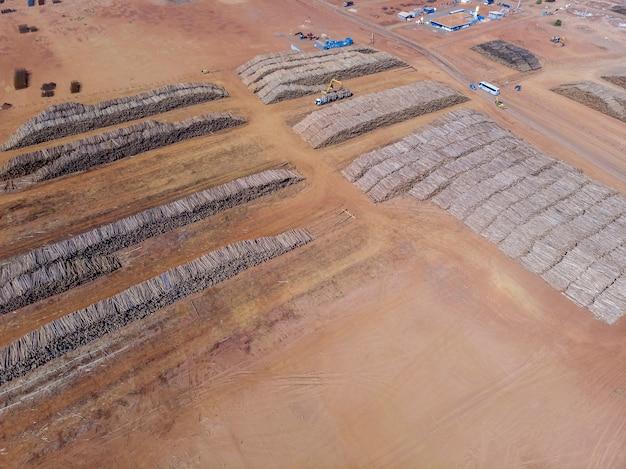 Troncos de eucalipto em uma fábrica de celulose solúvel e celulose especial