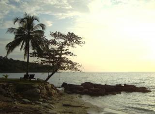 Tropicais palmas ilha ao pôr do sol