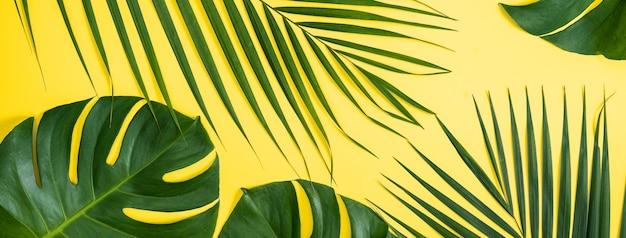Tropical deixa o fundo, folhas de palmeira, folhas monstera isoladas em um fundo amarelo brilhante, vista superior, plana leiga, conceito de design de verão sobrecarga.