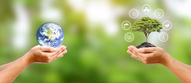 Troque planeta em mão humana com uma pequena árvore em mão humana e ícone de energia conceito de conservação ambiental elementos desta imagem fornecida pela nasa.