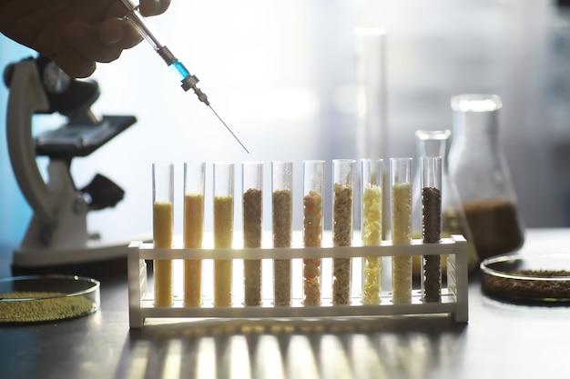 Tubos de ensaio com sementes de plantas selecionadas. pesquisa analisando grãos e sementes agrícolas em laboratório