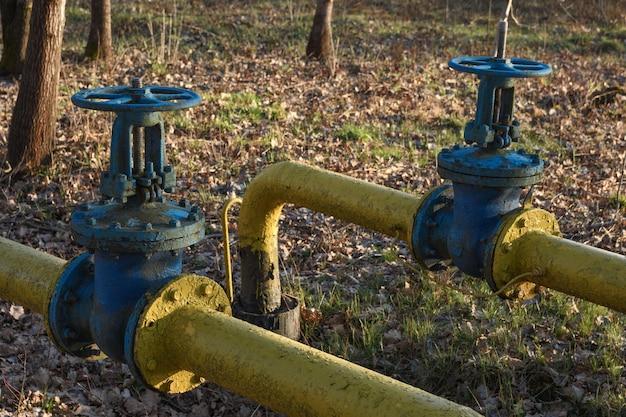 Tubos de gás velhos com grandes torneiras sobrepostas são colocados no subsolo no quintal.