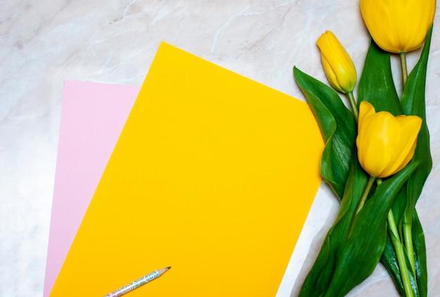 Tulipa amarela, lápis e papel colorido sobre fundo de mármore