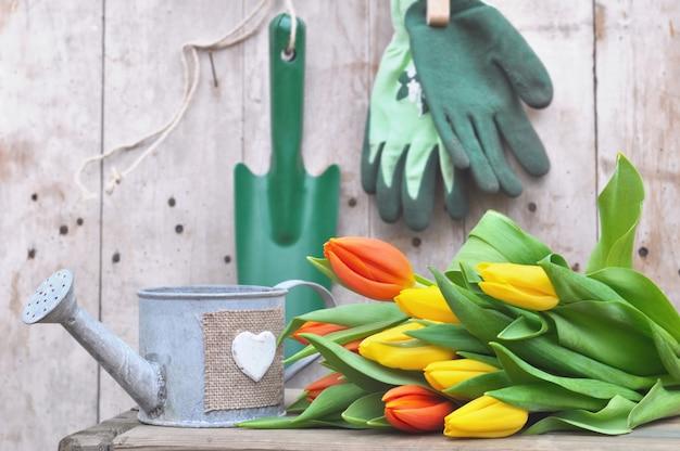 Tulipa com ferramentas de jardinagem