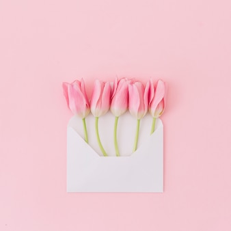Tulipa flores em envelope na mesa