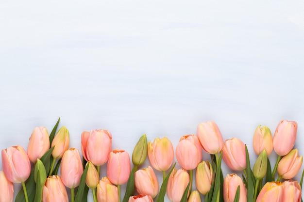 Tulipa rosa sobre fundo de madeira vintage. cartão de dia das mães.