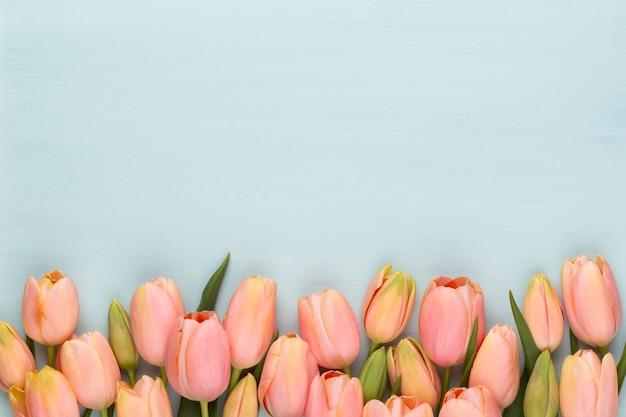 Tulipa rosa sobre fundo de madeira vintage.