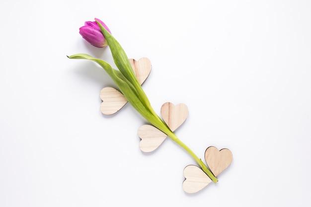 Tulipa roxa com corações de madeira na mesa
