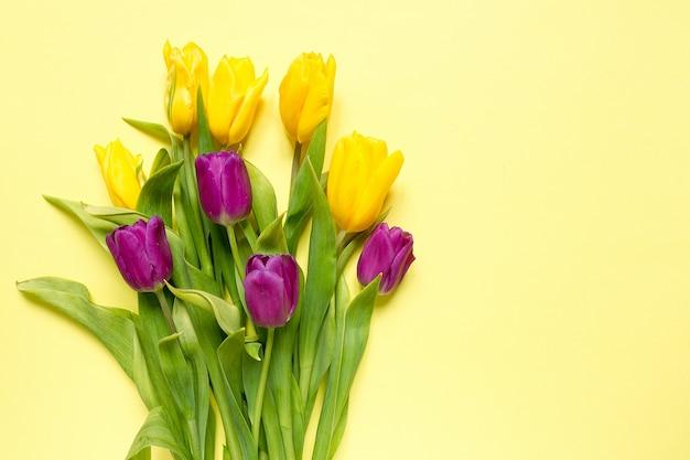 Tulipas amarelas e roxas das flores em um ramalhete em um fundo amarelo, um fundo festivo da mola