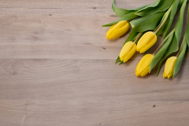 Tulipas amarelas em fundo de madeira