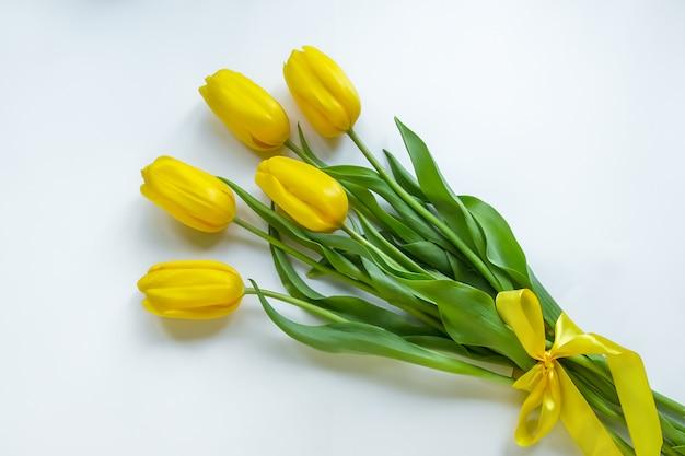 Tulipas amarelas sobre fundo branco