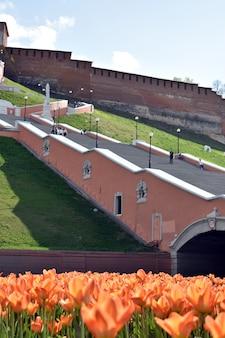 Tulipas ao pé da escadaria de chkalov. nizhny novgorod