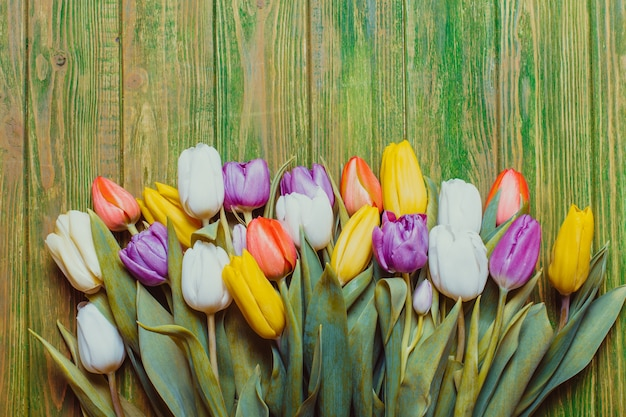 Tulipas coloridas na placa de madeira verde chique surrada. conceito de primavera com espaço de cópia