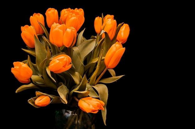 Tulipas com botões de laranja são isoladas em um fundo preto. o buquê de flores é lindo. foto de alta qualidade