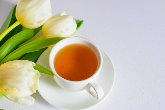 Tulipas da primavera concurso branco e uma xícara de chá no fundo branco