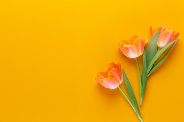 Tulipas de cor pastéis amarelos no estilo vintage retro amarelo. natureza morta, arte plana leiga.