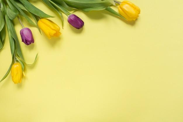 Tulipas de flores amarelas e roxas em um buquê em um fundo amarelo