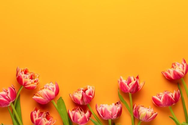 Tulipas de flores de primavera em fundo de cores pastel. estilo vintage retrô.
