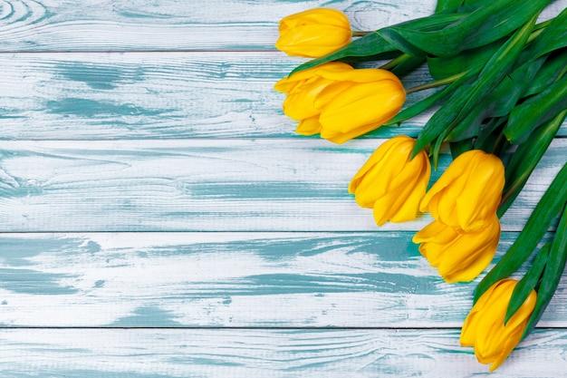 Tulipas em madeira azul. imagem de flor de primavera.