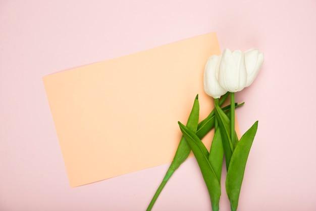 Tulipas florescendo com cartão na mesa