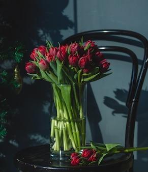 Tulipas frescas vermelhas dentro do vaso de vidro com água em uma cadeira.