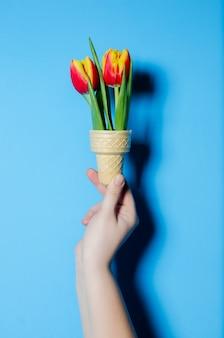 Tulipas primavera linda em uma mão feminina. o conceito de primavera.