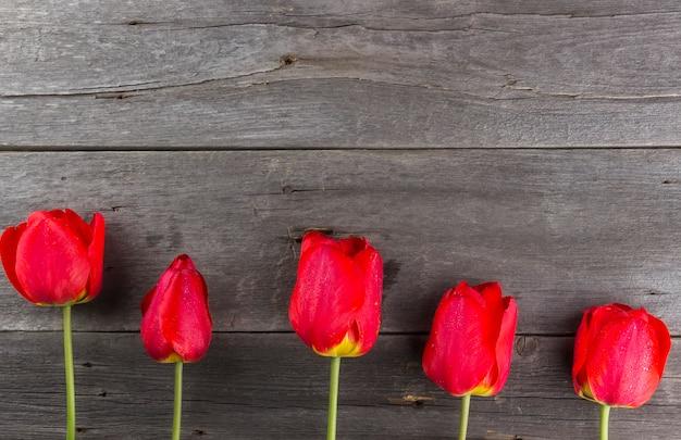 Tulipas vermelhas em um fundo escuro de madeira