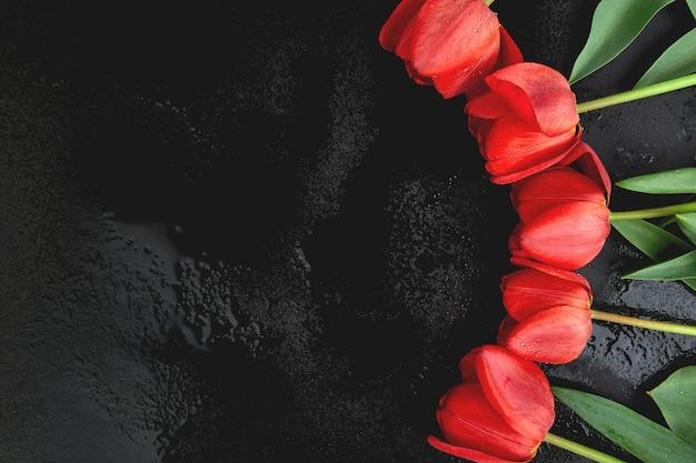 Tulipas vermelhas frescas em fundo preto. um buquê de flores da primavera, lindo cartão de felicitações.