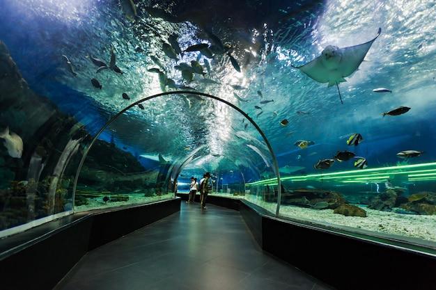 Túnel subaquático