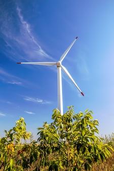 Turbina eólica disparada de baixo, grama e arbusto na moldávia
