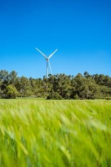 Turbina eólica se destaca em um prado verde