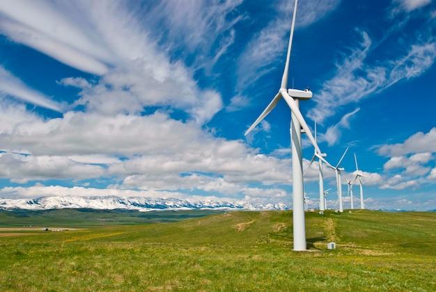 Turbinas eólicas na pastagem contra o céu nublado