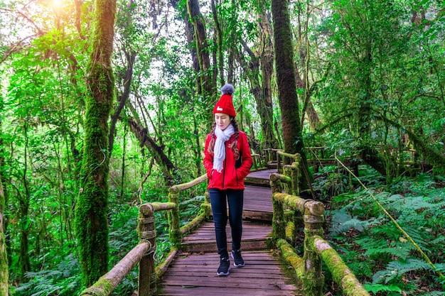 Turista caminhando na trilha natural de ang ka no parque nacional de doi inthanon, chiang mai, tailândia.