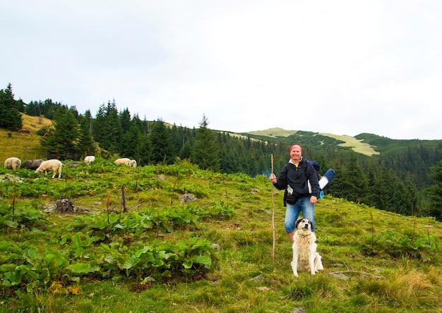 Turista com um cachorro e cordeiros no topo de uma montanha