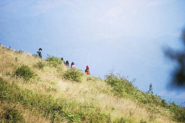 Turistas, andar, em, a, prado, em, montanhas
