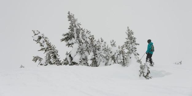 Turistas, esquiando, ligado, montanha nevada, whistler, columbia britânica, canadá