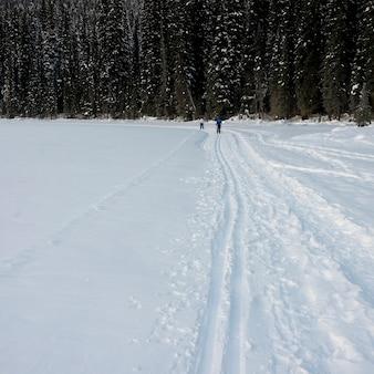 Turistas, esquiando, ligado, neve coberta, paisagem, lago esmeralda, campo, columbia britânica, canadá