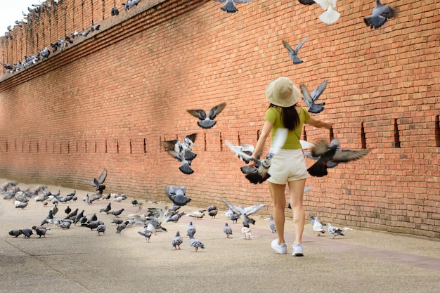 Turistas gostam de caminhar e no antigo muro da cidade velha de phae gate chiang mai