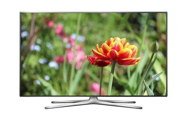 Tv lcd com flor de tulipa na tela