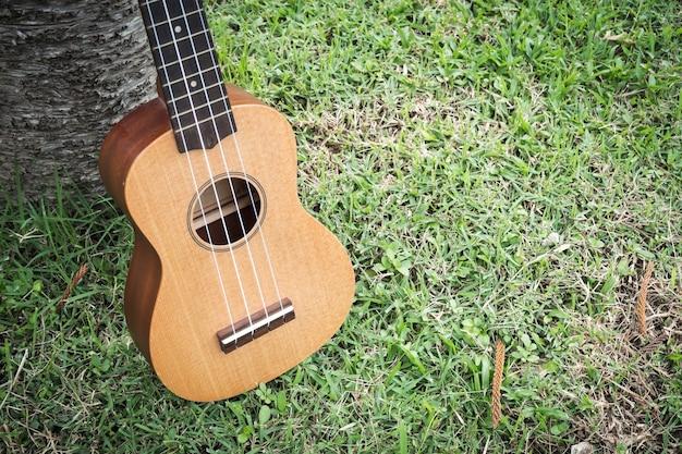 Ukulele no campo de grama. instrumento de música acústica.