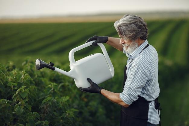 Último homem regando suas plantas em seu jardim com polvilhe. homem de avental preto.