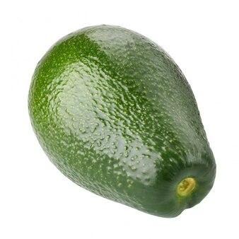 Um abacate isolado. pêra de jacaré.